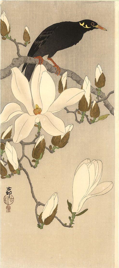 awakeningfromthedream:  Myna on Magnolia, Koson (Naga Oban) Ca. 1910.