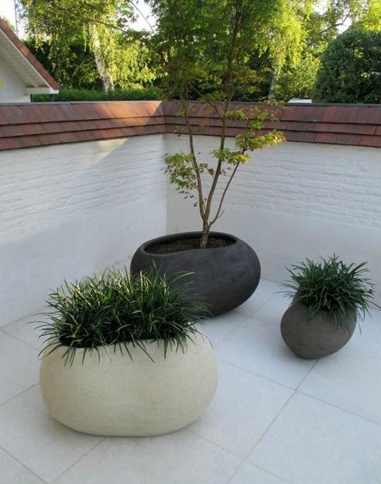 Planters...HOLLA!!!