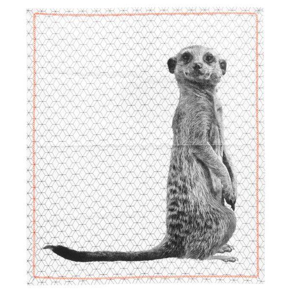 Meerkat Print Tea Towel - animal pattern towel - Present Time