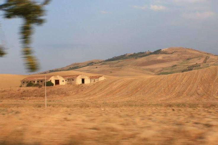 """525  """"Alta Murgia"""", colline Murgiane in zona di Altamura (Bari), Puglia. Foto di Giuseppe Quercia"""