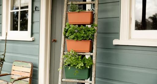 Fragrant herbs will add a flavour punch to any meal, particularly when they are freshly snipped from your own garden. Create a herb ladder by filling containers with a variety of tasty herbs, and you'll be harvesting a bumper crop of homegrown herbs this season.