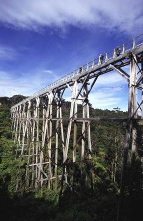 Percyburn Viaduct, historic sight on the Hump Ridge Track, New Zealand