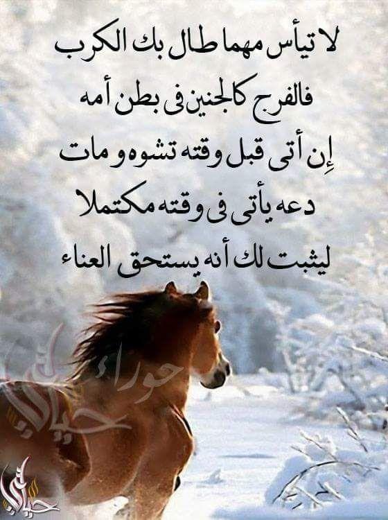 Pin By فلسطينية ولي الفخر On روائع الحكم Words Quotes Positivity