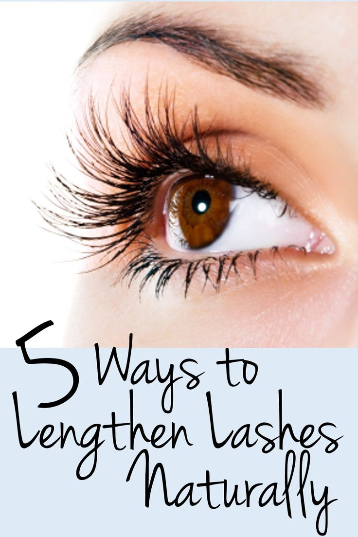 1. Olive or castor oil (infuse oil with lemon peel for a week first for added benefit) 2. Brushing lashes (with a lash comb) 3. Vaseline 4. Vitamins - biotin or 'skin and nails vitamins' (also help hair grow) 5. Coconut oil
