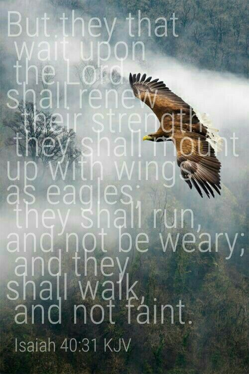 Isaiah 40:31 KJV But they that wait upon the Lord shall renew their strength; they shall mount up with wings as eagles; they shall run, and not be weary; and they shall walk, and not faint.