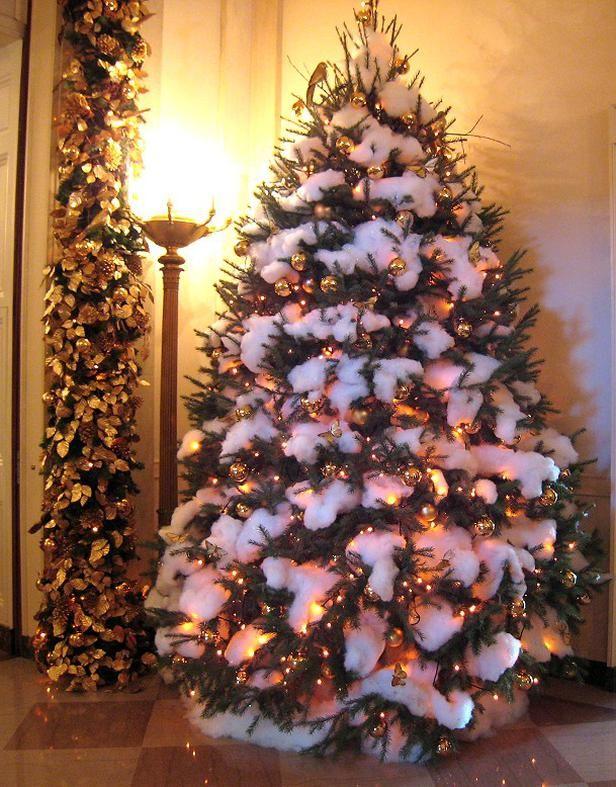 Bush White House Christmas Tree #Christmas #Tree #White House