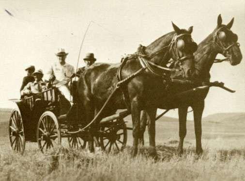 Gazi Mustafa Kemal, Orman Çiftliği nde... 14 Temmuz 1929 Atatürk ve Ankara
