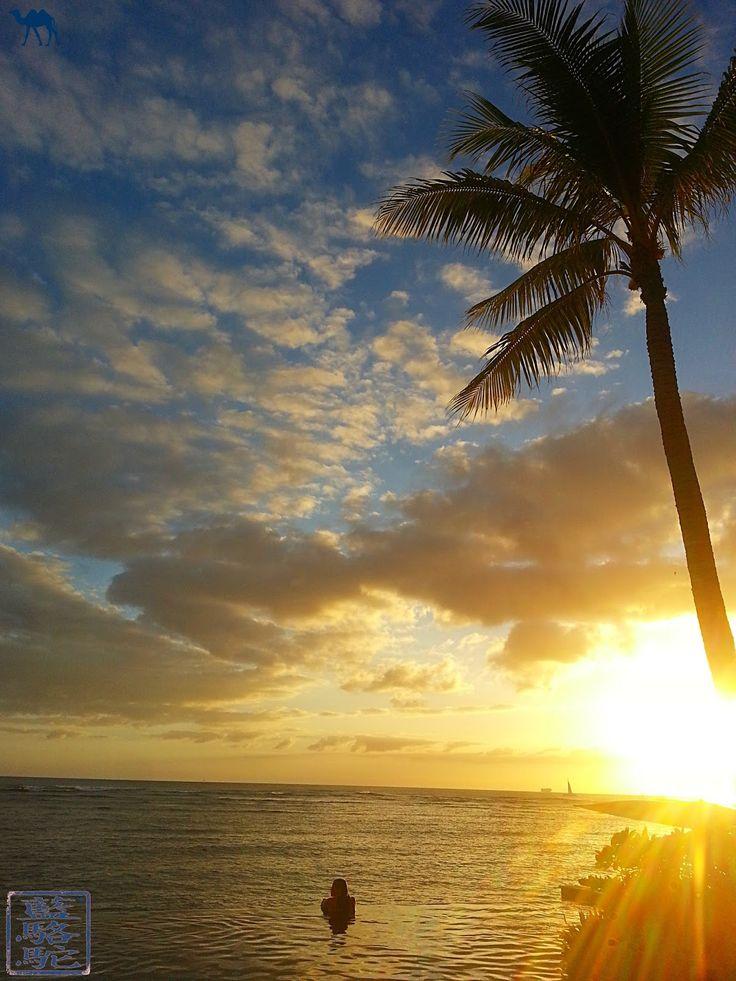 NOUVEL ARTICLE SUR LE BLOG !  Aloha ! Apres un petit coin de paradis en Méditerranée, nous vous propulsons à l'autre bout du monde vers un autre Eden. Celui de Hawaï. Retrouvez donc nos clichés :  #voyage #photographie #Hawaii #Atlantique #ile #Waikiki #Maui #Honolulu #Oahu #BigIsland #surf #island #volcan #volcano #USA #unitedstates #America #Beach #Waves #paysage #landscape #paradis #paradise #eden  #photo #photography #sun #seaside #coast #palmtree #sunset