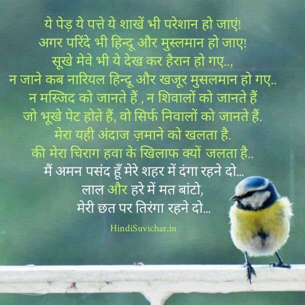 56 best images about hindi on pinterest quotesaboutlife for Koi 5 kavita