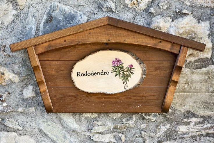 Rododendro 1
