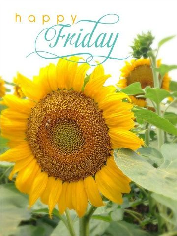 Happy Friday! ❤ I hope your day is as wonderful as it can be! Ours is off to a great start!!