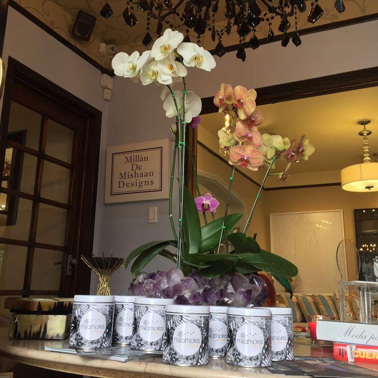 Hermosas fotos nos llegan hoy las cuales fueron tomadas por @milamoresbogota en un lugar mágico, exquisito en todos los sentidos de la palabra donde su decoración se vio acompañada por un rato por las infusiones de Milamores, @mdem_designs, fue y será siempre un placer estar en lugares como estos con una MILAMORES. #MILAMORES #milamoresinfusiones #decoracion #pictureoftheday #beautiful #design #flowers #orquídeas