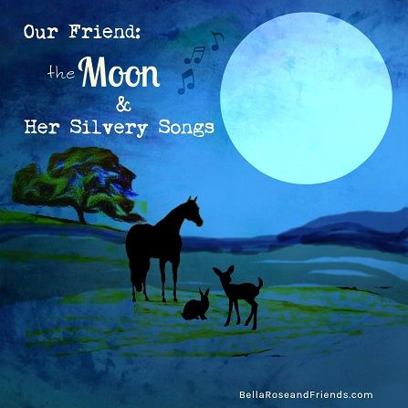 Sometimes at night, when it's dark, you can feel like you don't have a best friend. But then you meet the moon, and she can be your best friend of all!  She's everywhere you are and her soft, cheerful songs make you feel better:  Keep looking up... Don't get down... Good things are coming.