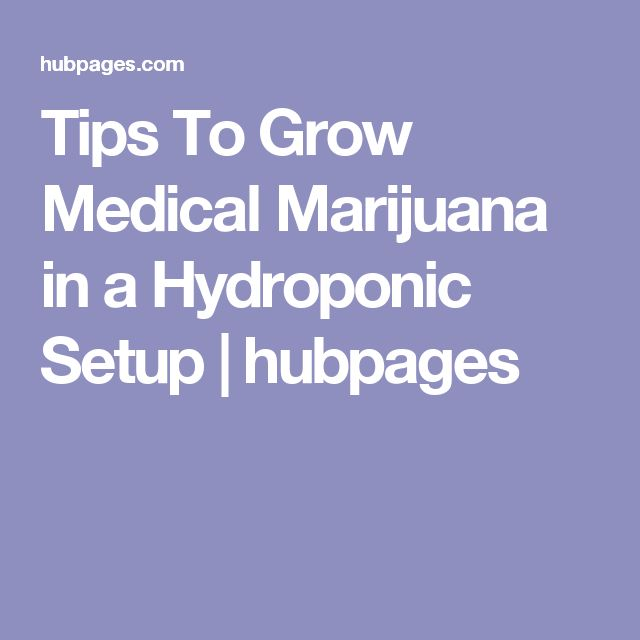 Tips To Grow Medical Marijuana in a Hydroponic Setup   hubpages