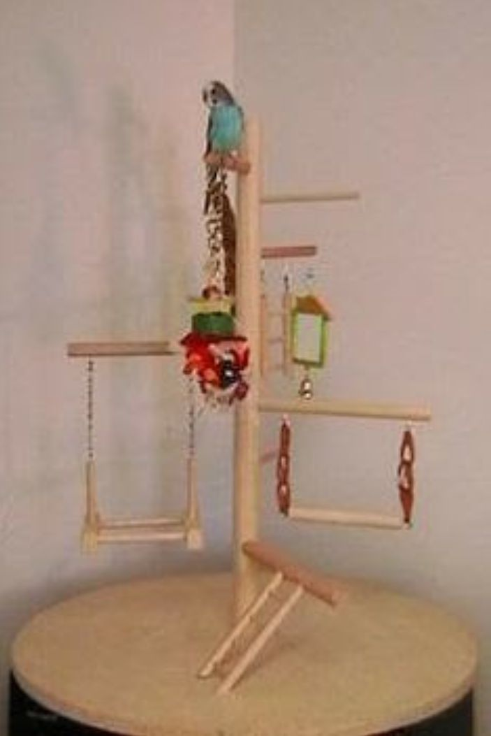 how to build a parrot play gym