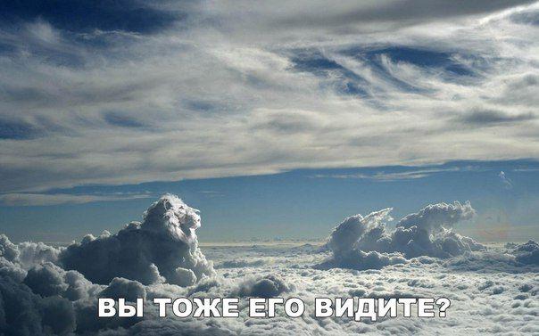 http://azrov-rom.ru/category/rekomenduyu/