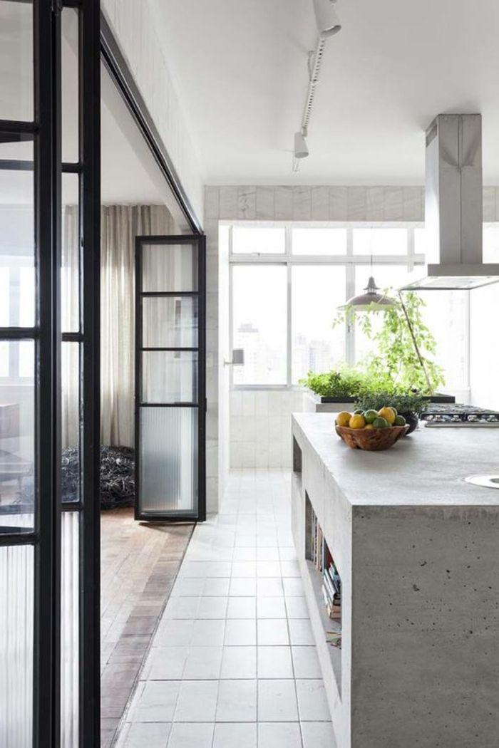 offene küche trennen glastür harmonikatür weiße küche pflanzen ...