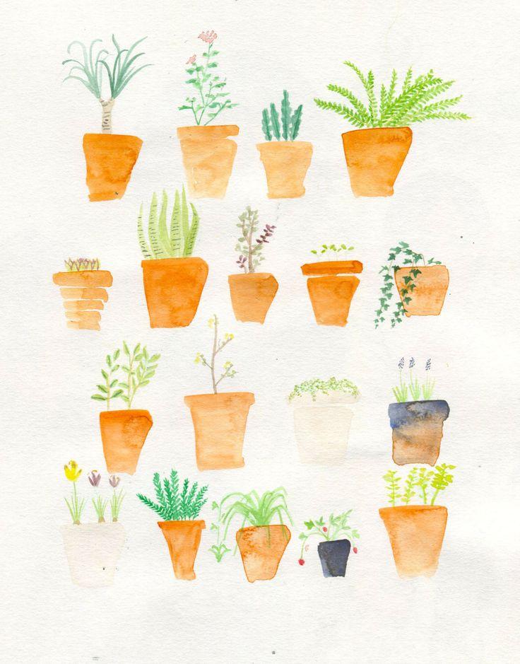 Plants, yay!