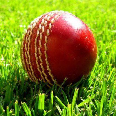 Welcome Cricket News to #MaisonPardon ,Holland.