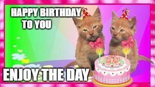 Happy Birthday Cats Meme Generator - Imgflip