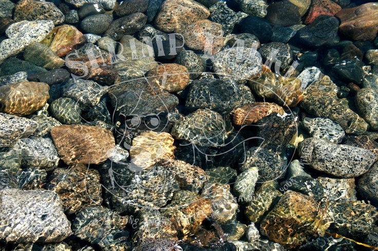 Speckled rocks, underwater.