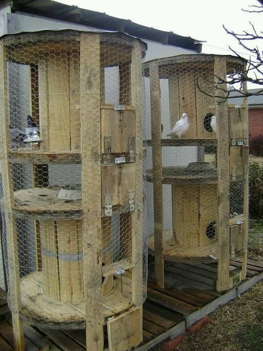 WHAT A GREAT USE FOR THESE SPOOLS! I want to make an activity tower for my house bunny!!!! You could also make a cat tower too without the wire mesh.... mmmm..... and add carpet remnants for scratching....and stepped ramps in between rop and bottom for bunny to travel up and down.... branches for kitty to climb..... ;D