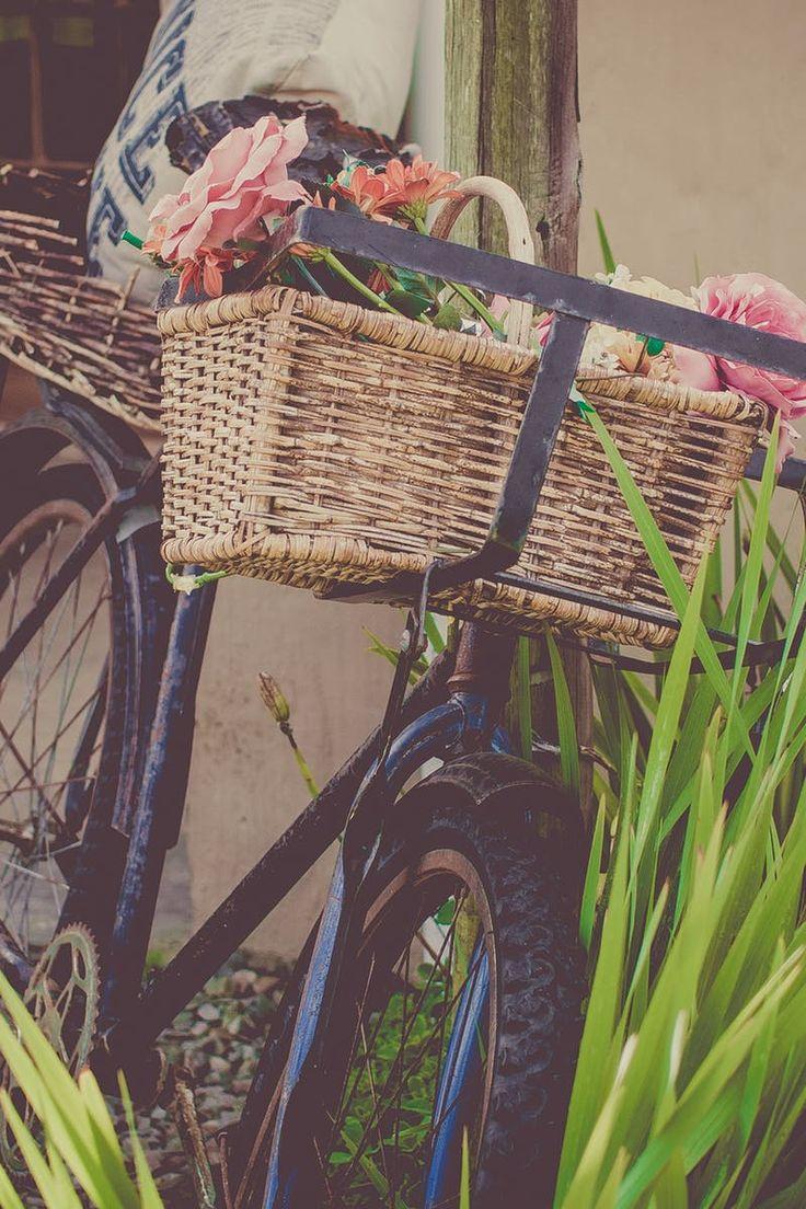 Free stock photo of landscape, street, flowers, vehicle