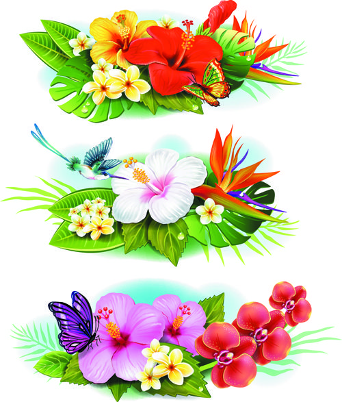 Flowers borders vector set 04 - Vector Flower free download