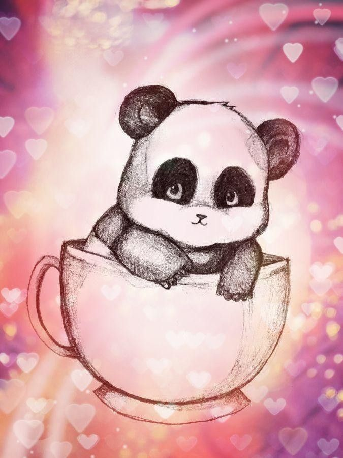 каталоге картинки милых панд карандашом последние годы