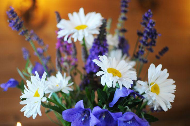 Schöner Blumenschmuck auf dem Riedlhof in Au bei Bad Aibling. Auf der großen Wiese vor dem Hof können Sie jedes Jahr eine herrliche Blütenpracht beobachten. Besonders im Frühjahr wenn die Obstbäume zum Blühen anfangen, ist ein Urlaub auf dem Bauernhof im Chiemsee Alpenland lohnenswert. http://www.pension-riedlhof.de/wellness-bauernhof/sonnenwiese-terrasse