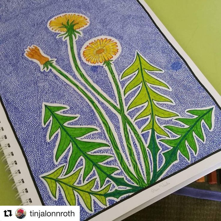 """Mental Images Coloring Books (@paivivesala_art) on Instagram: """"Happy weekend with this sunny and fresh colouring by @tinjalonnroth ☀️❤️ Book: Mielikuvia Mental…"""""""
