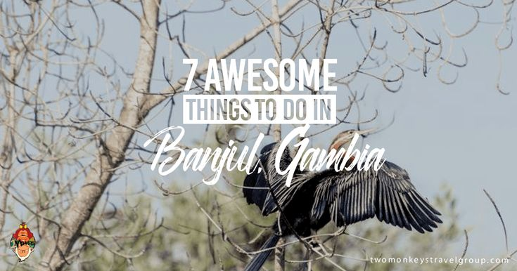 Banjul is relatively untouched by tourists who tend to head straight to the beaches. Here are 7 awesome things to do Banjul, Gambia.