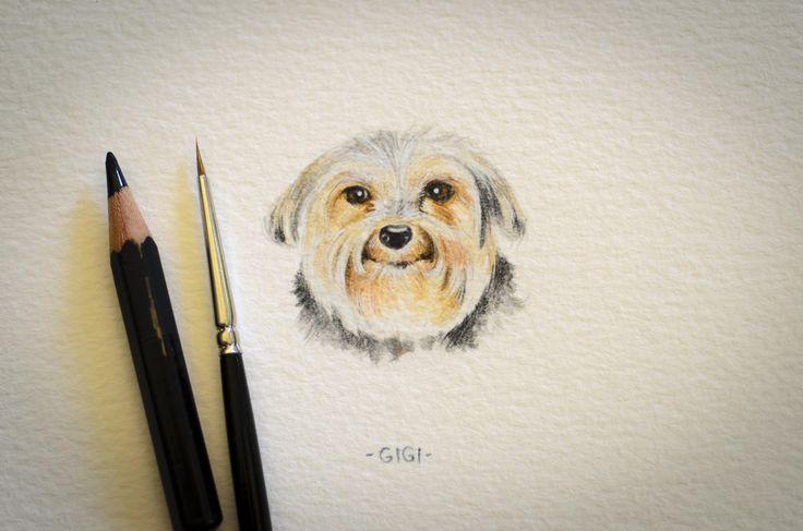 Gigi, miniature watercolour
