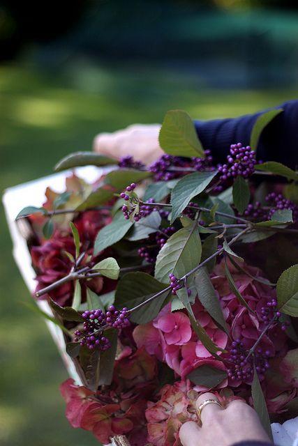 Le Chameau gardening
