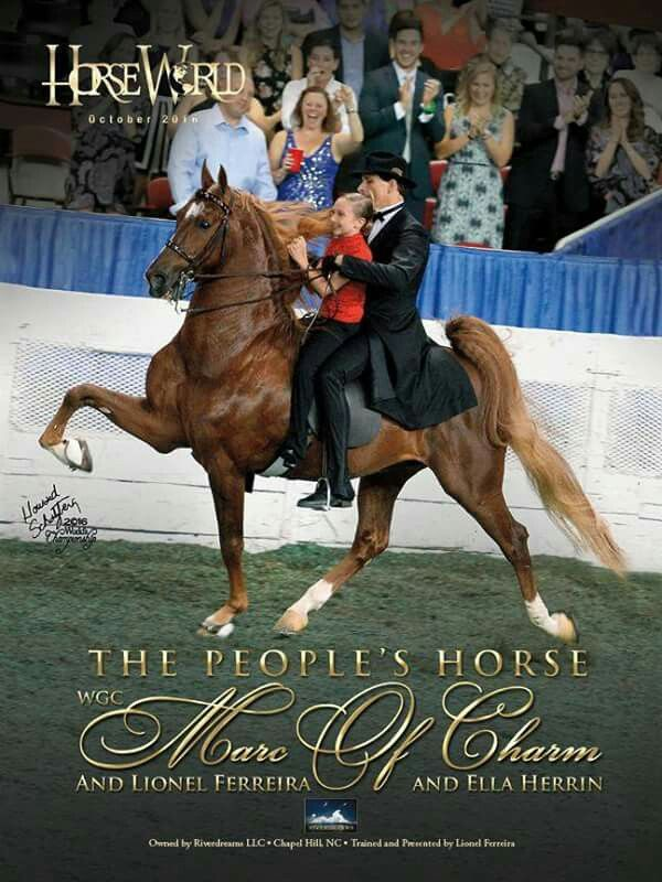 WGC Marc Of Charm in his final appearance at his retirement ceremony at the 2016 World's Championship Horse Show. Lionel Ferreira and Ella Herrin, up.