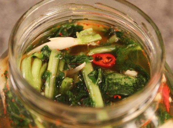Young summer radish water kimchi / 열무 물김치 / Yeolmu mulkimchi (or yeolmu mul kimchi, yulmu mulkimchi)