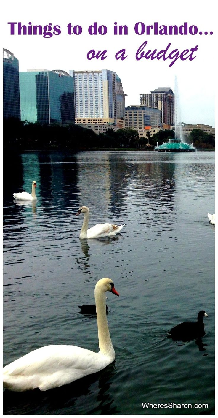 Things to do in Orlando on a budget http://www.wheressharon.com/family-trip-usa-caribbean/road-trip-usa/things-to-do-in-orlando-on-a-budget/