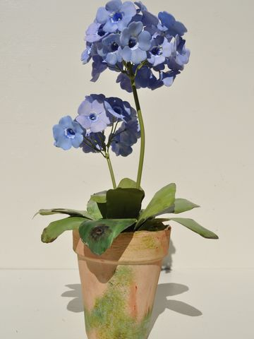 Blue Auricula,  Porcelain Flowers, and pot.  Tole leaves and stems. Approximately 13""