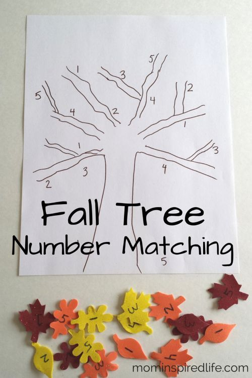 Number Recognition: Fall Tree Number Matching. This fall tree craft is so much fun to make! It is perfect for your fall theme preschool week! #preschool #activities #number #recognition
