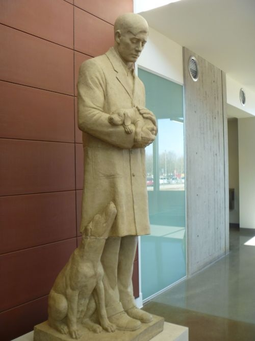 The Gentle Doctor sculpture. Restored & once again on display at Iowa State University College of Veterinary Medicine's Small Animal Clinic.