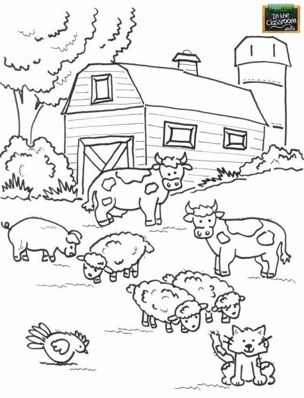 Farm Animals Coloring Sheets Di 2020 Buku Mewarnai Binatang Ternak Binatang