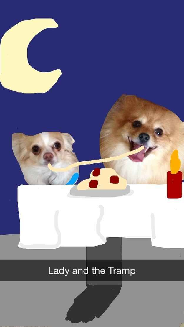 Lady and the Tramp | These Snapchats Of A Dog Turned Into Disney Princesses Are Fantastic