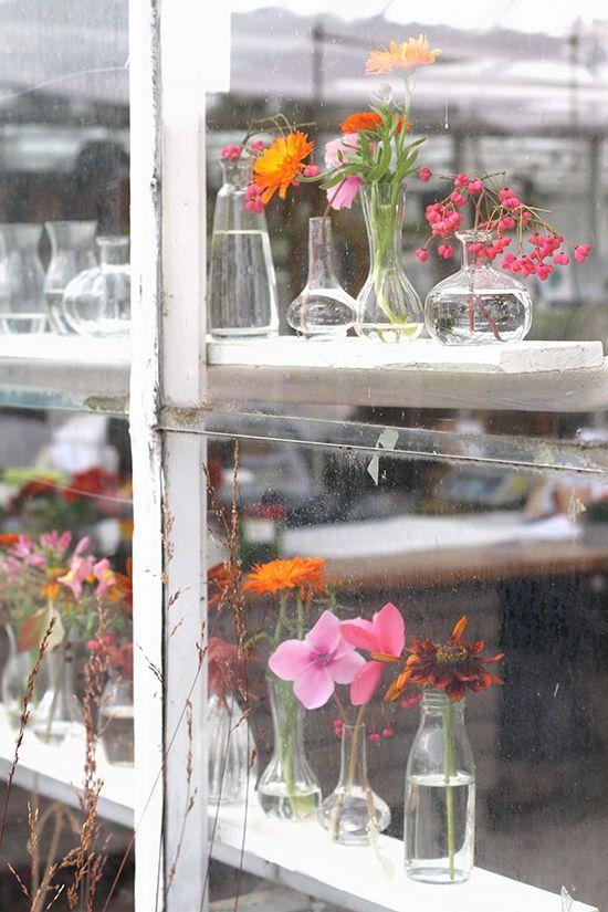 rosendals trädgård in stockholm | designlovefest