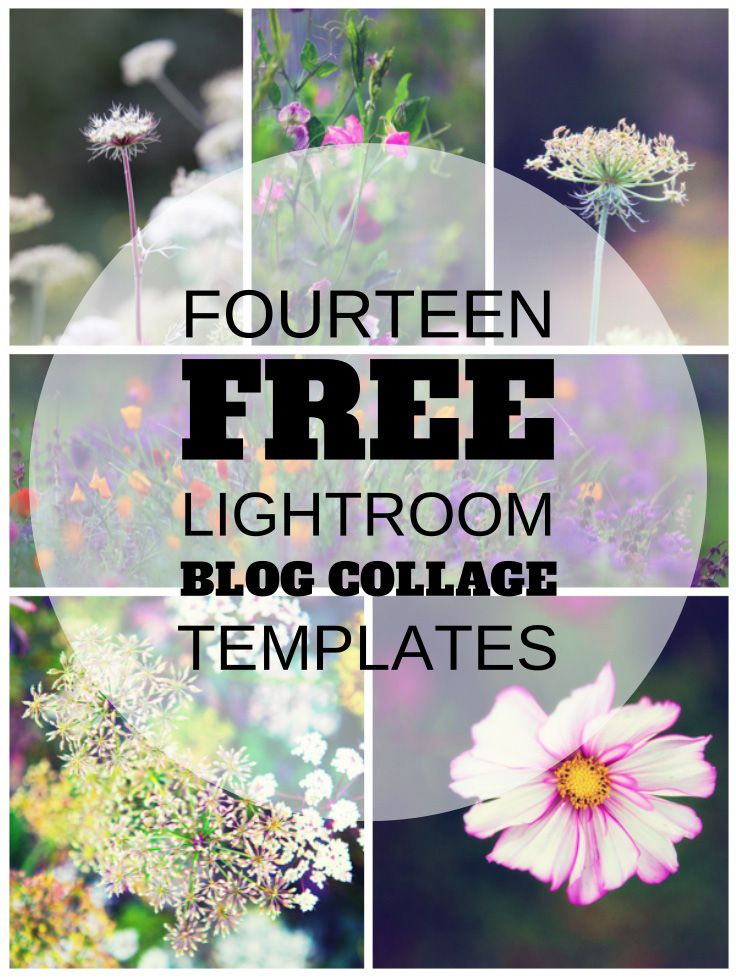 Pin by traci smiley on photography tutorials tips for Free lightroom collage templates