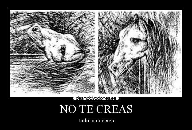 carteles creer ver rana caballo mismo dibujo doblado paranoya visual desmotivaciones