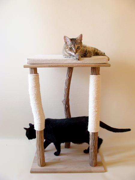 arbre chat 39 androm de 39. Black Bedroom Furniture Sets. Home Design Ideas