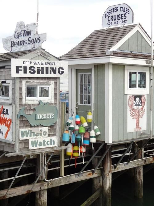Deep Sea Fishing and Whale watching on Cape Cod