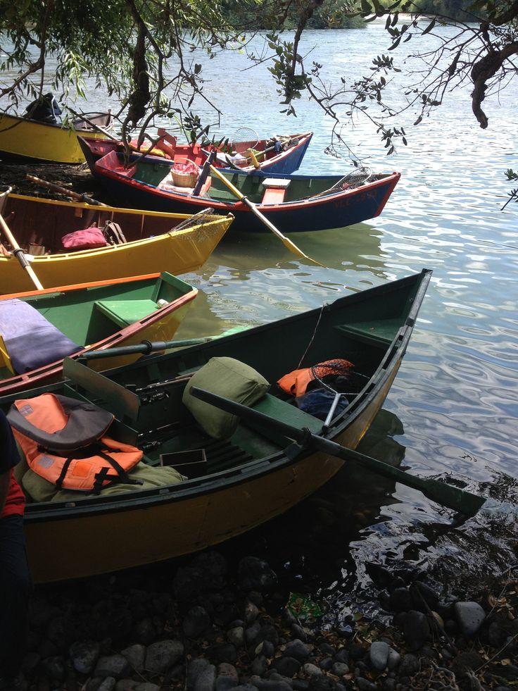 Botes de pesca en Tolten
