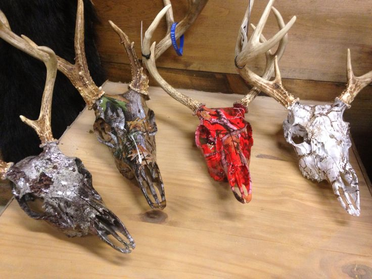 Whitetail skulls hydro dipped in numerous camo patterns