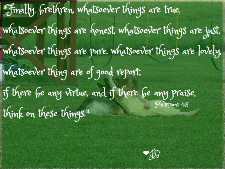 """""""Finally, brethren, whatsoever things are true, whatsoever things are honest, whatsoever things are just, whatsoever things are pure, whatsoever things are lovely, whatsoever things are of good report; if there be any virtue, and if there be any praise, think on these things."""" Philippians 4:8"""